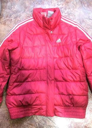 Куртка малиновая зимняя adidas