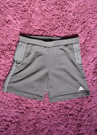Adidas climalite спортивные женские шорты