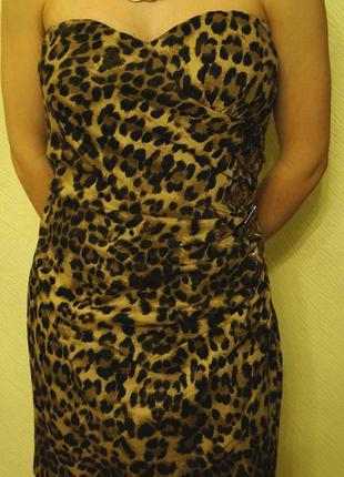 Тигрове плаття