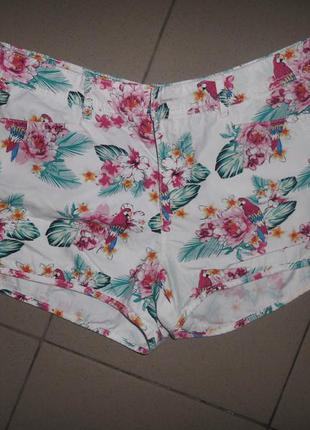 Яркие короткие шорты с попугайчиками f&f