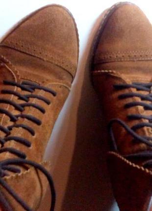 Коричневые замшевые сапоги ботинки stradivarius (страдивариус)