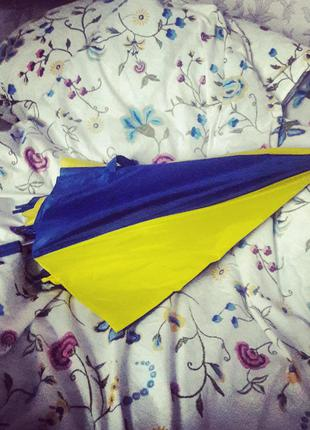 Зонт национального цвета