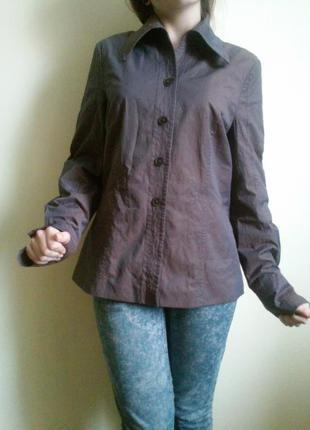 Сорочка рубашка туника блуза жакет
