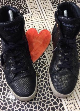 Суперовые кожаные кеды pantofola d'oro ежедневное обновление- подписуйтесь