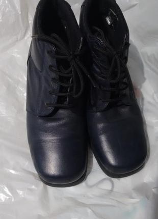 Кожаные синие ботинки clarks,сапожки,полусапожки 37