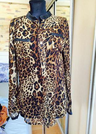 Тигрова блуза турція