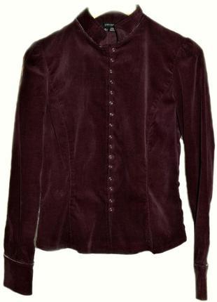 Блуза zara вельветовая1