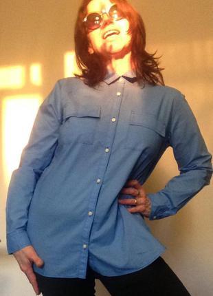 Базовая рубашка небесного цвета gap