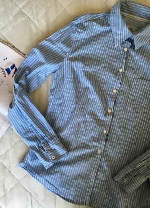 Рубашка в полоску синяя