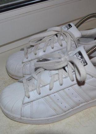 Adidas superstar оригинал