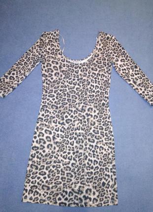 Платье terranova p. xs