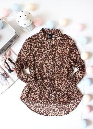 Леопардовая блуза свободного кроя blue loop