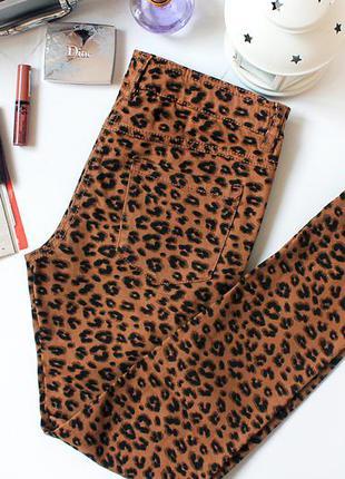 Леопардовые джинсы скинни i love next на миниатюрную девочку