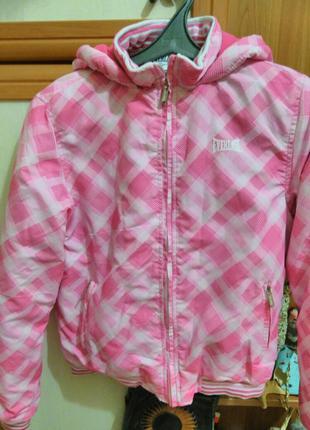 Новая курточка everlast с бирками
