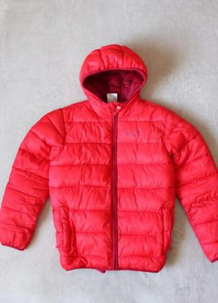 Куртка осень-весна jack wolfskin