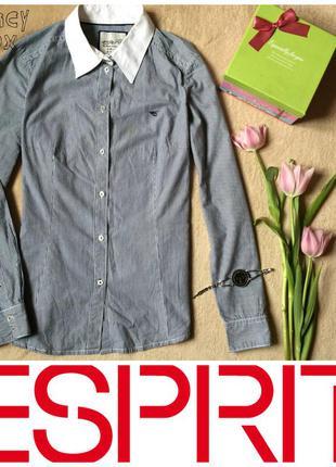 Рубашка в полоску с белым воротником прямой крой
