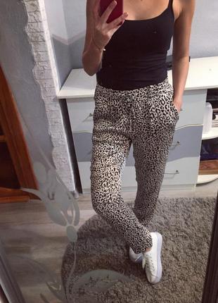 Стилтные штаники леопардовые от zara , брюки , штаны