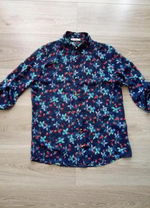 Блуза земляника