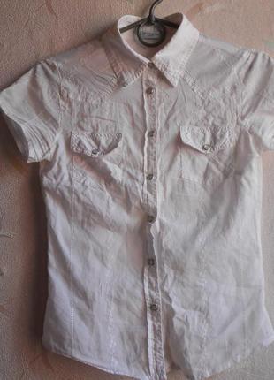 Супер рубашка с короткими рукавами new look