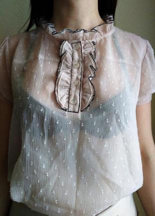 Блузка, рубашка, кофточка шифоновая