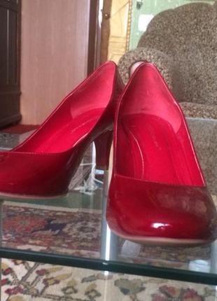 Шикарные туфли bcbg