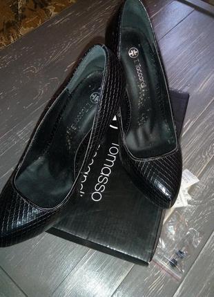 Туфлі tomasso taccardi