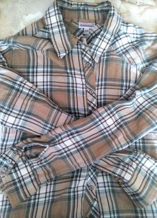 Рубашка женская принт burberry всего 119 грн!!!