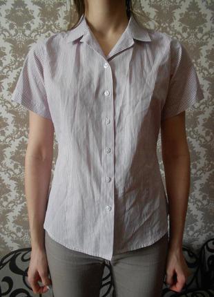 Рубашка в полосочку