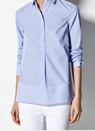 Оболденная классическая рубашка голубая massimo dutti