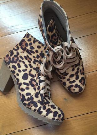 Ботики, ботинки леопардовые, befree, 38 размер.