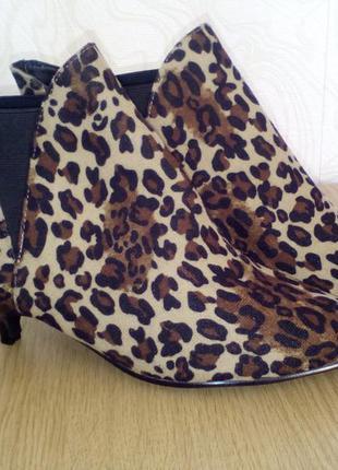 Новые леопардовые ботильоны bonprix