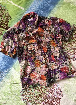 Блуза л-хл