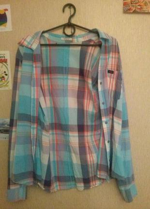 Новая оригинальная женская рубашка от lee !!