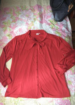 Блуза-рубашка cotton traders