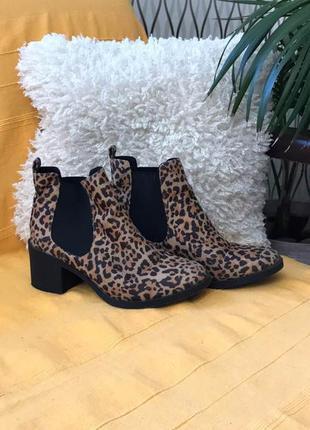 Полусапожки ботинки леопардовый принт h&m!