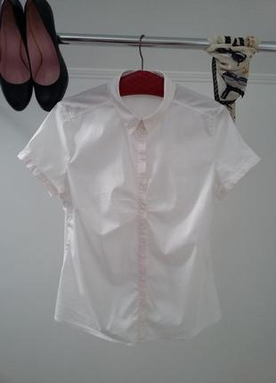 Yessica-базовая блузка в нежно-розовом цвете.