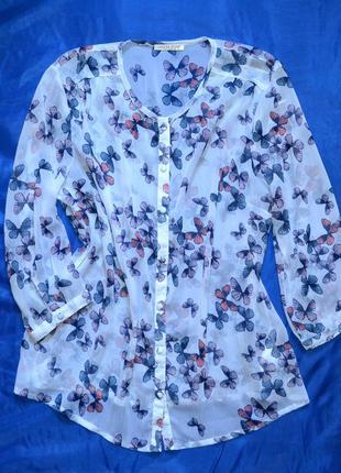 Шифоновая блузка-рубашка , бренд anna rose