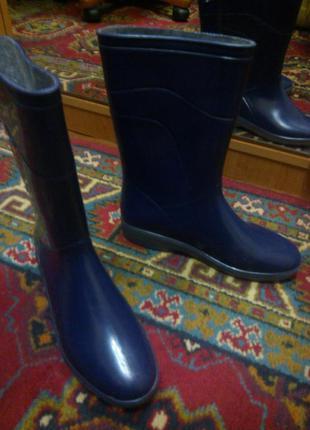 Резиновые синие сапоги