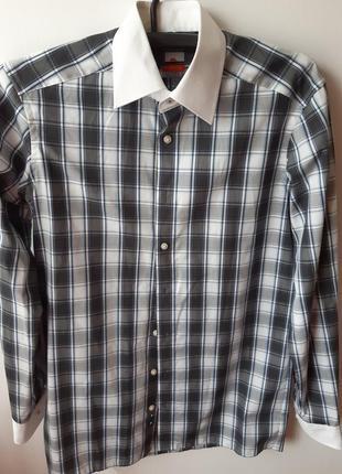 Стильная мужская рубашка olymp