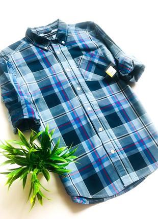 Синяя трендовая рубашка в клетку tommy hilfiger! 12-14 лет. 100% оригинал!