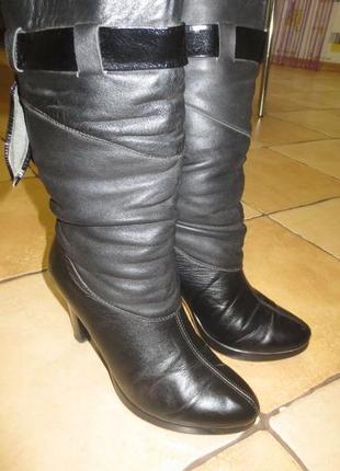 Зимние сапоги на каблуке (кожа)