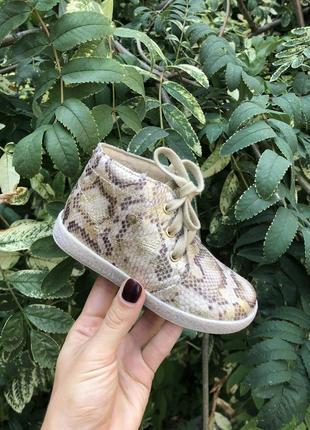 Фирменные кроссовки кеды ботинки ботиночки сапожки falcotto