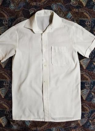 Рубашка белая школьная с коротким рукавом