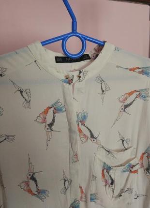 Ніжна блуза з принтом птахів zara3 фото