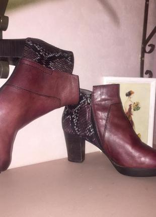 Ботинки ботильоны марсалового цвета со вставками под змеиную кожу3 фото