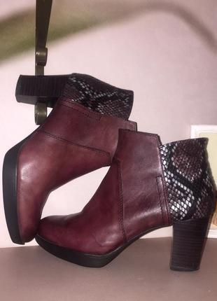 Ботинки ботильоны марсалового цвета со вставками под змеиную кожу1 фото