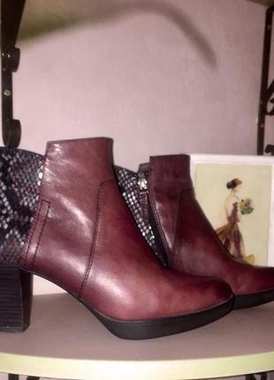 Ботинки ботильоны марсалового цвета со вставками под змеиную кожу5 фото