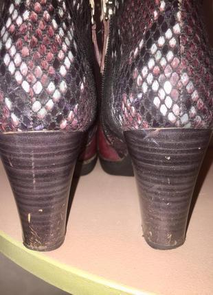 Ботинки ботильоны марсалового цвета со вставками под змеиную кожу9 фото