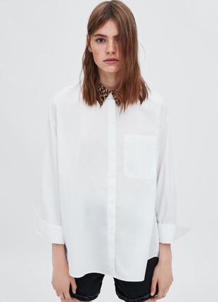 Біла сорочка оверсайз із комірцем в анімалістичний принт 38/m zara