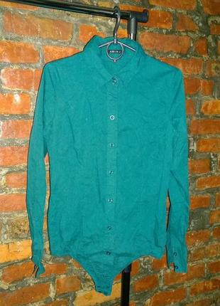 Боди рубашка блуза кофточка amisu